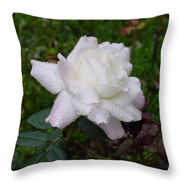 White Rose In Rain Throw Pillow