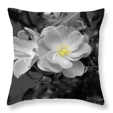 White Rose Throw Pillow by Karen Lewis