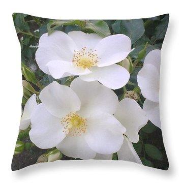 White Roses Bloom Throw Pillow