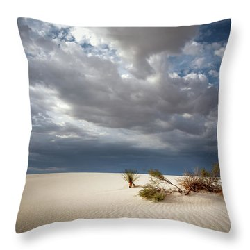 White Sands Throw Pillow by James Barber