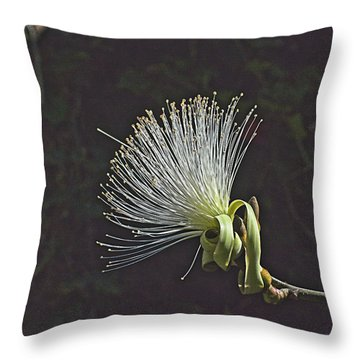 White Shaving Brush Pseudobombax Flower Throw Pillow