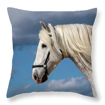 White Stallion Throw Pillow