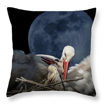 White Storks Of Fagagna With Full Moon Throw Pillow