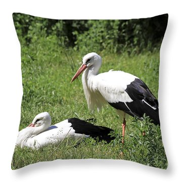 White Storks Throw Pillow