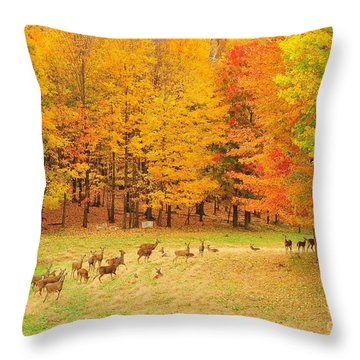 White Tail Deer Herd Throw Pillow by Terri Gostola