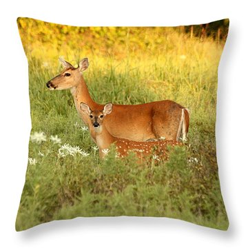 White-tail Doe And Fawn In Meadow Throw Pillow