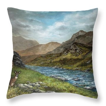White Tail Meadow Throw Pillow by David Jansen