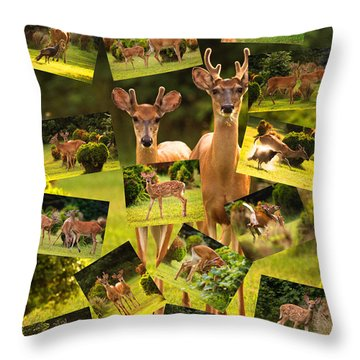 Throw Pillow featuring the photograph White-tailed Collage by Angel Cher