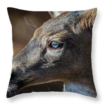 White Tailed Deer Facial Profile Closeup Portrait Throw Pillow