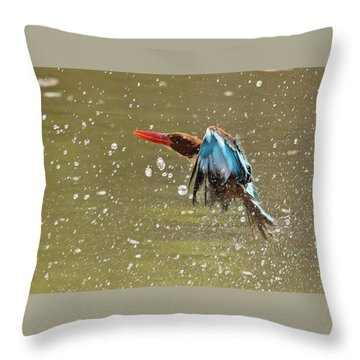 White-throated Kingfisher Throw Pillow