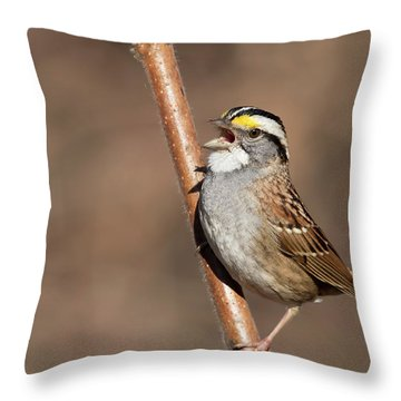 Throw Pillow featuring the photograph White-throated Sparrow by Mircea Costina Photography