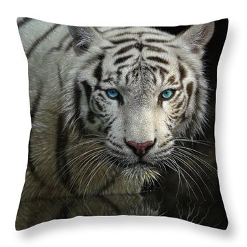 White Tiger - Into The Light Throw Pillow