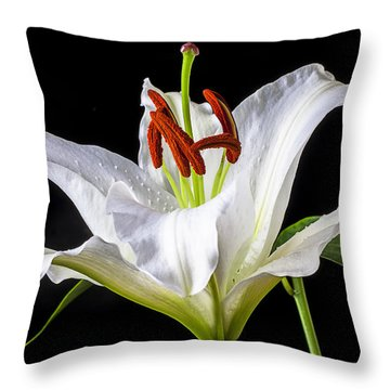 White Tiger Lily Still Life Throw Pillow
