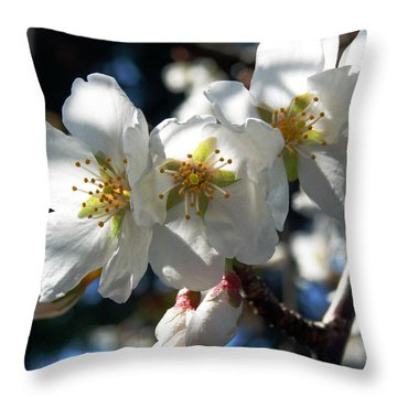 White Tree Blossoms Throw Pillow by Mikki Cucuzzo