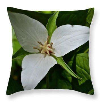 Trillium 1 Throw Pillow