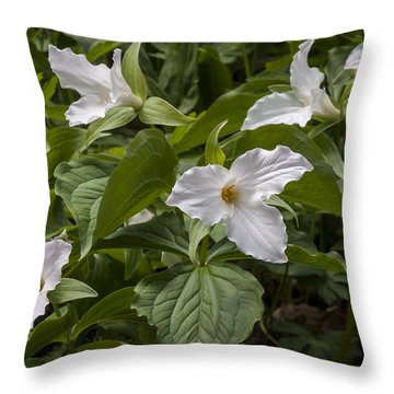 Throw Pillow featuring the photograph White Trillium by Tyson and Kathy Smith