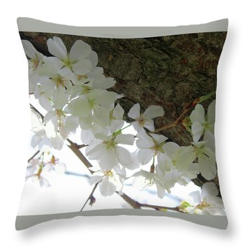 Dogwood Branch Throw Pillow