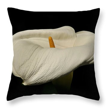 Throw Pillow featuring the photograph White Calla Lily by Howard Bagley