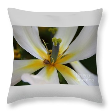 Throw Pillow featuring the photograph White Tulip by Jolanta Anna Karolska