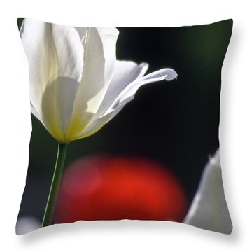 White Tulips  Blossom Throw Pillow by Heiko Koehrer-Wagner