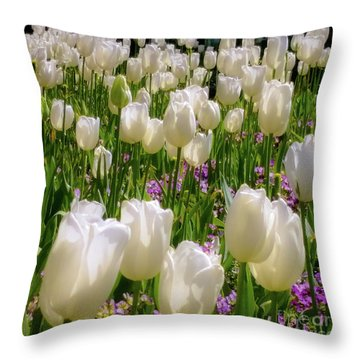 White Tulips In Bloom Throw Pillow