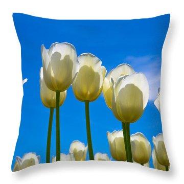 White Tulips  Throw Pillow by John Roberts