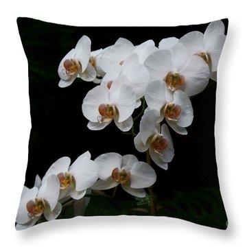 White Velvet Throw Pillow