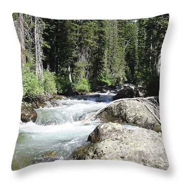 White Water Throw Pillow by Judyann Matthews