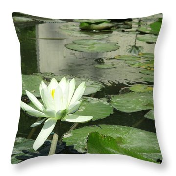 Throw Pillow featuring the photograph White Water Lily 3 by Randall Weidner