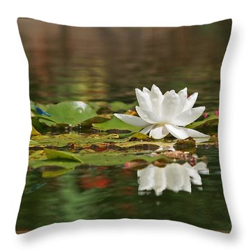 White Water Lily With Damselflies Throw Pillow