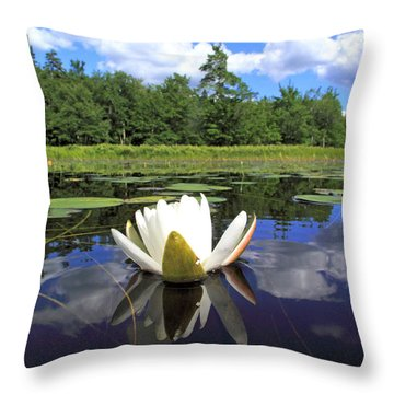 White Waterlily On A Lake Throw Pillow