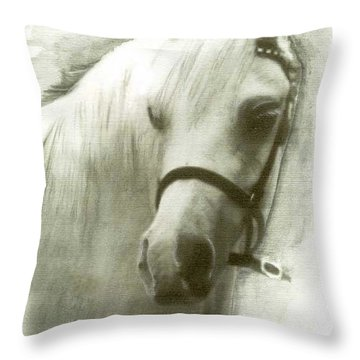 White Welsh Pony Throw Pillow