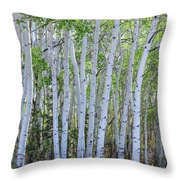White Wilderness Throw Pillow by James BO Insogna