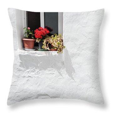 White Window Throw Pillow