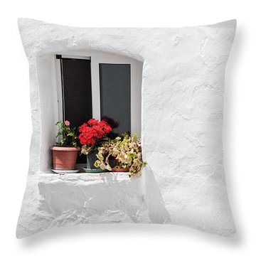 White Window Throw Pillow