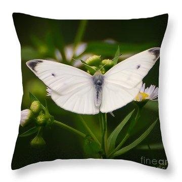 White Wings Of Wonder Throw Pillow