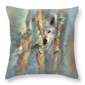 White Wolf Focused Throw Pillow