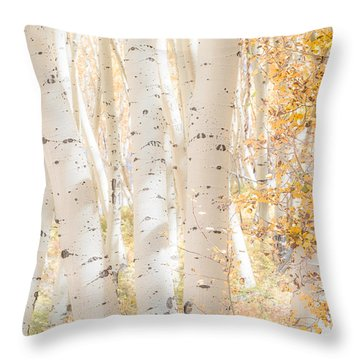White Woods Throw Pillow by The Forests Edge Photography - Diane Sandoval