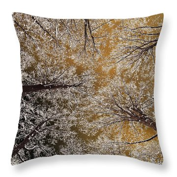 Throw Pillow featuring the photograph Whiteout by Tony Beck