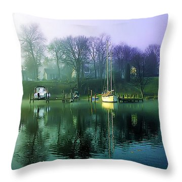 Throw Pillow featuring the photograph White's Cove Awakening by Brian Wallace