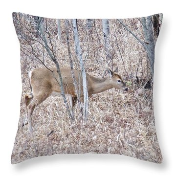 Whitetail Deer 1171 Throw Pillow by Michael Peychich