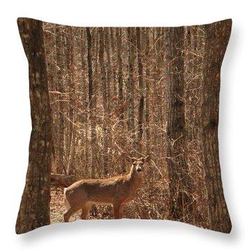Throw Pillow featuring the photograph Whitetail Deer Buck by Jim Sauchyn
