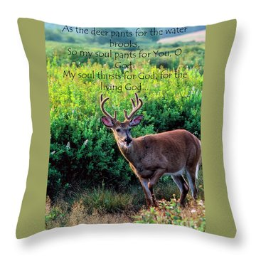 Throw Pillow featuring the photograph Whitetail Deer Panting by Thomas R Fletcher