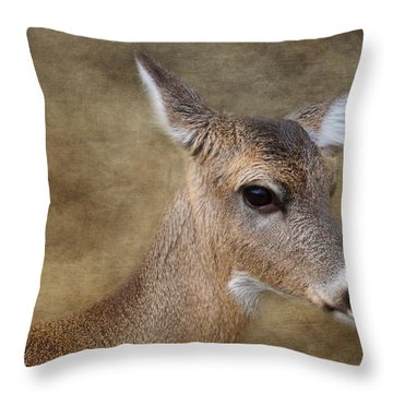 Whitetail Doe Portrait Throw Pillow