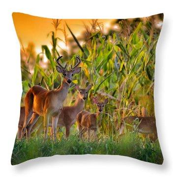 Whitetail Family Throw Pillow