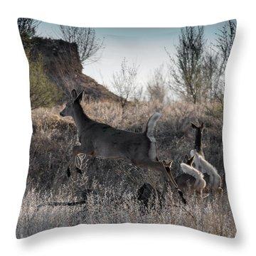 Whitetail In Flight Throw Pillow