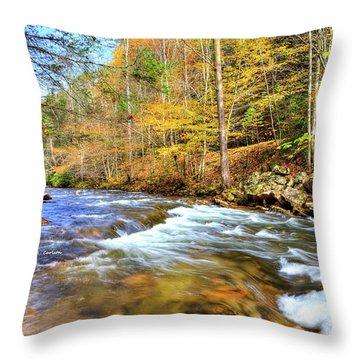 Whitetop River Fall Throw Pillow
