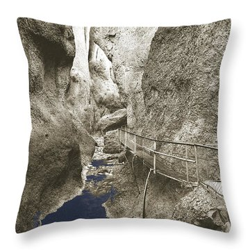 Whitewater Blu Throw Pillow