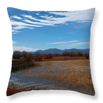 Throw Pillow featuring the photograph Whitewater Draw by James Peterson