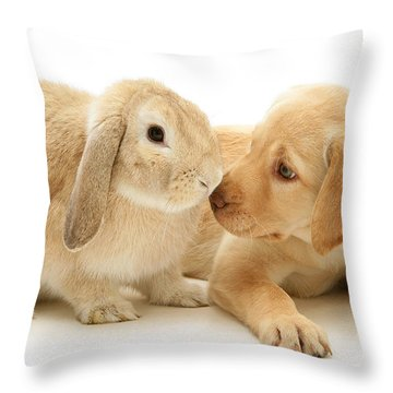 Who Ate All The Carrots Throw Pillow